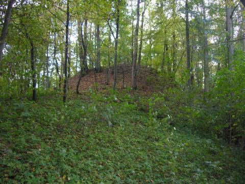 Dovilų piliakalnis iš šiaurės rytų pusės