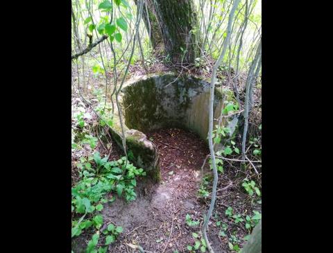 Kocho bunkerio liekanos Žardės kapinaitėse