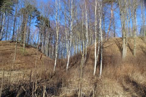 Perkūnkalnis ir Andulių piliakalnis