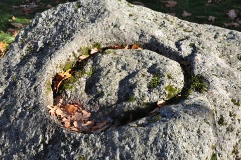 Klibių akmuo su plokščiadugniu dubeniu