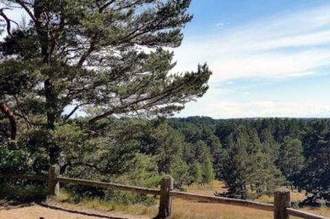 Avinas hill viewpoint
