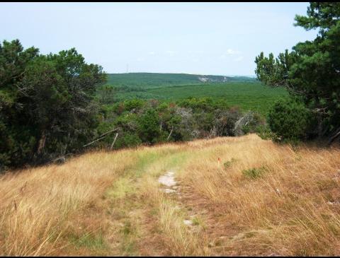 Vaizdas nuo kopos į Pervalkos pusę