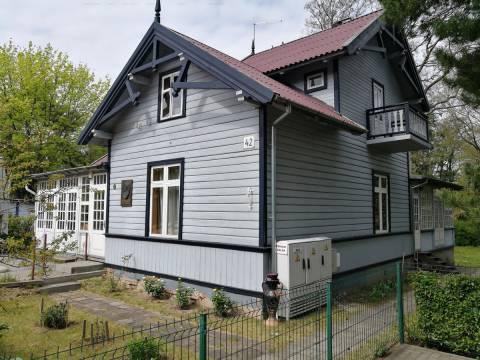 Dailininko Antano Žmuidzinavičiaus namas