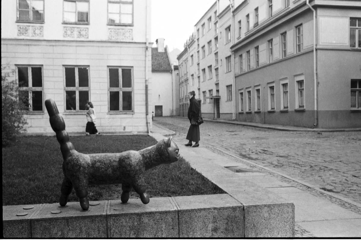 """Skulptūra """"Senamiesčio katinas"""" 1989 metais"""