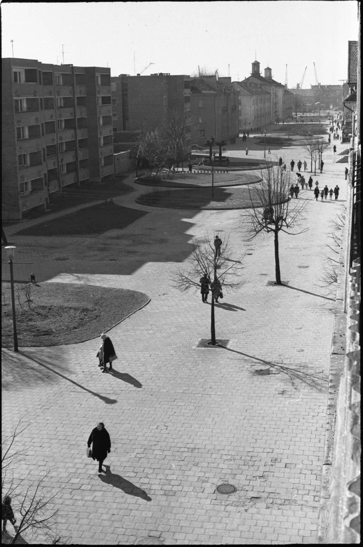 M. Mažvydo alėja 1977 metais