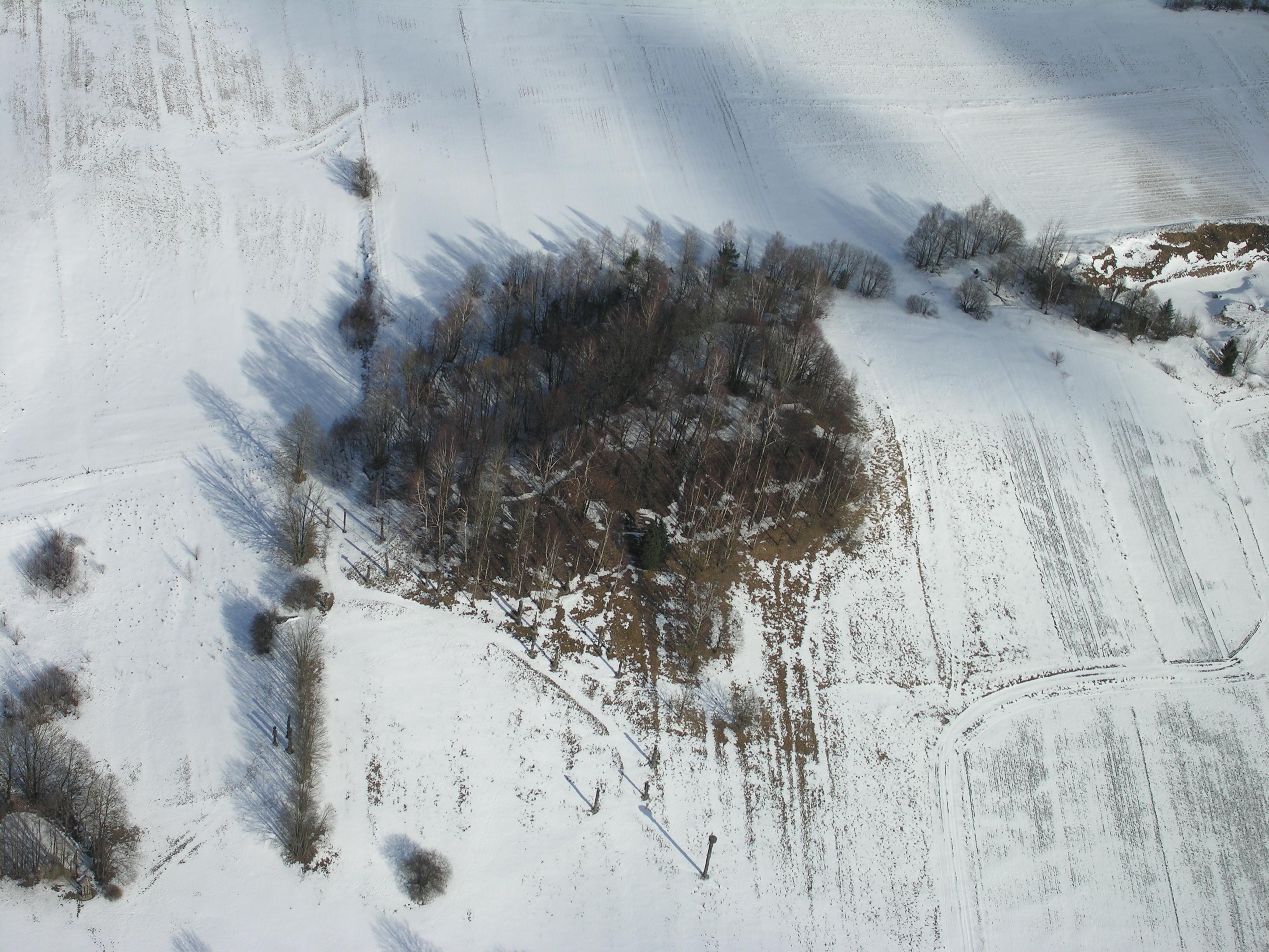 Žvaginių piliakalnis iš oro (pietų pusės)