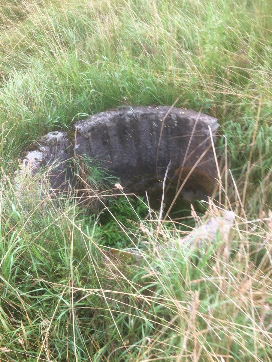 Kocho bunkeris Purmaliuose