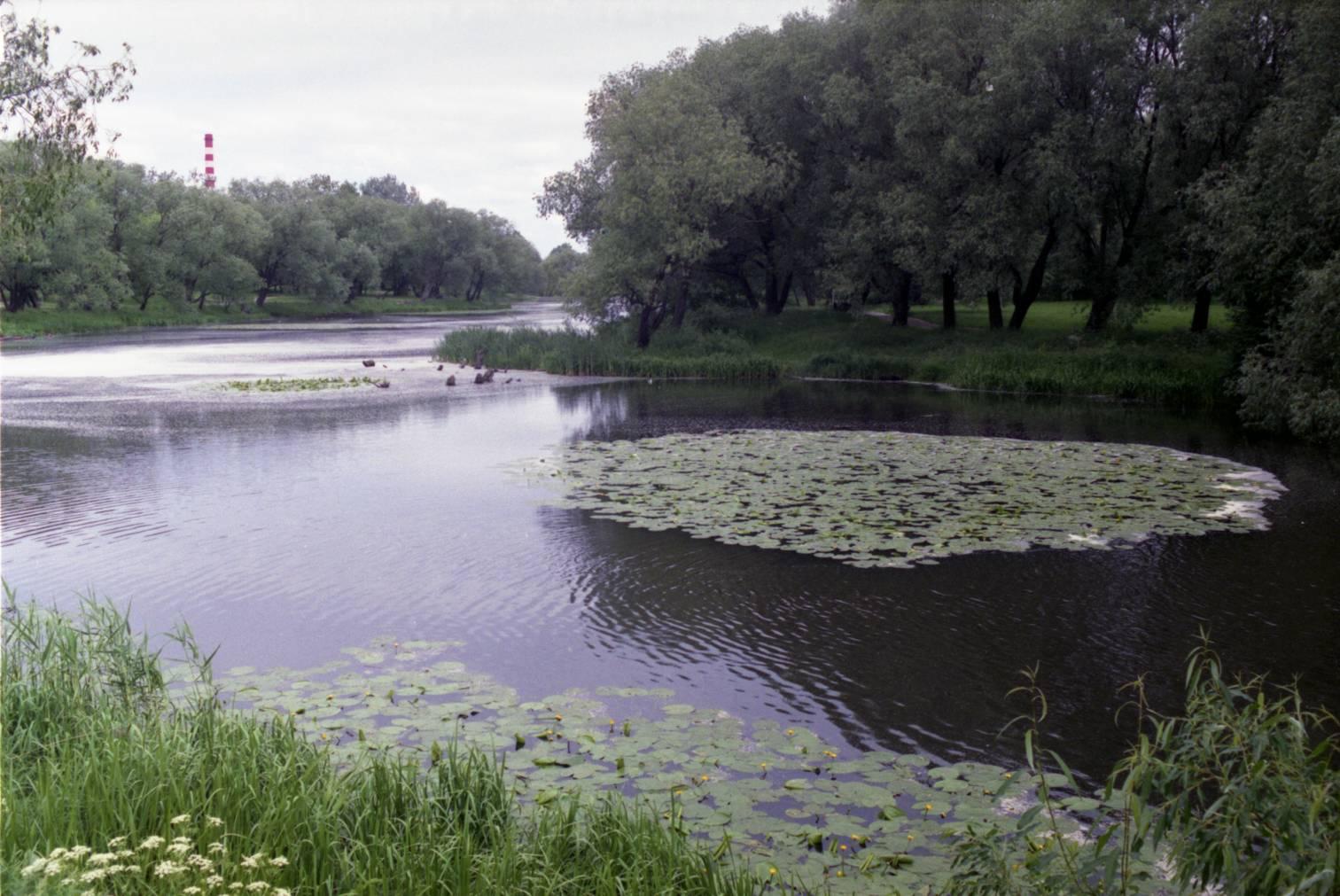 Trinyčių ežeras. Klaipėda