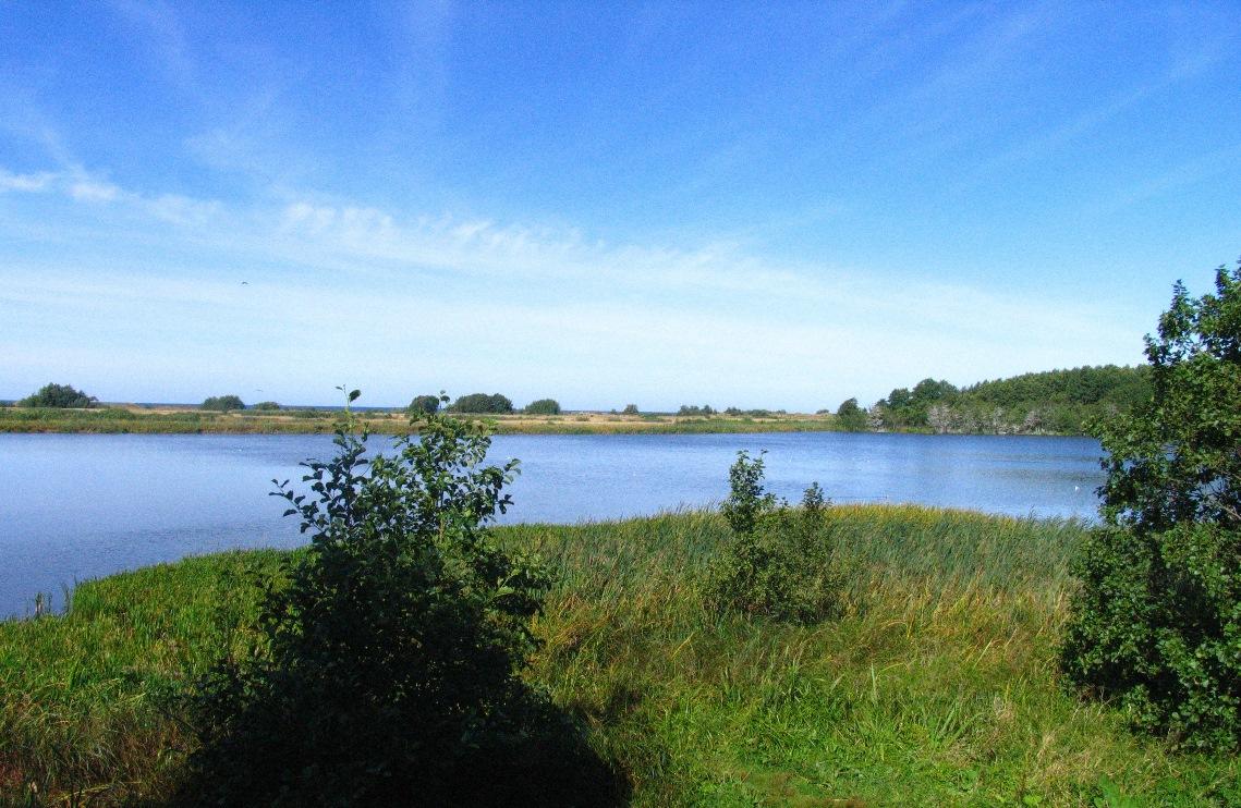 Plazės (Plocio) ežeras