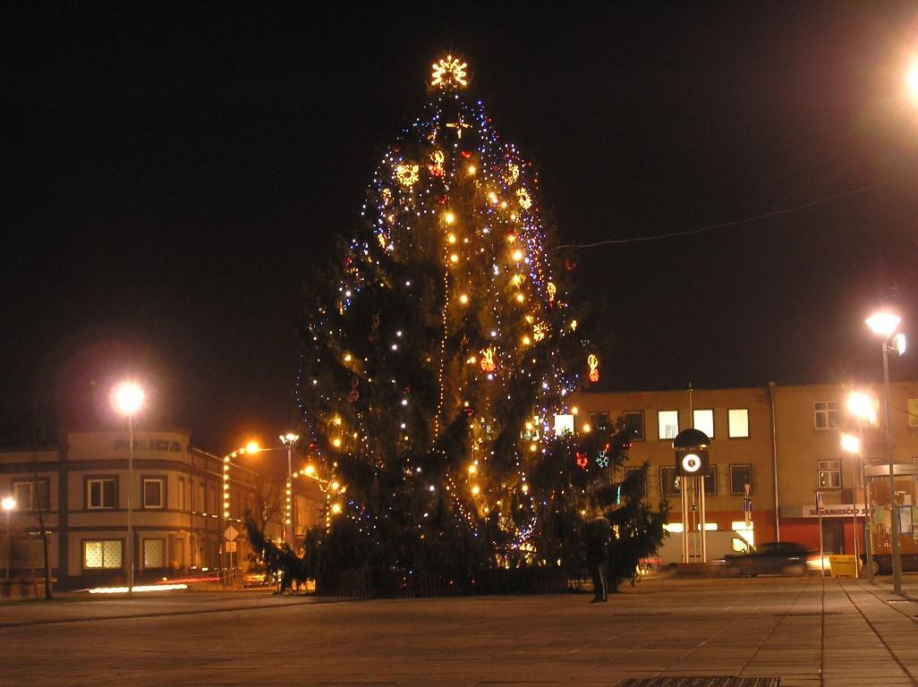 Kalėdų eglė Senamiesčio aikštėje